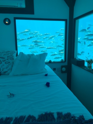 Floating Room Manta Resort